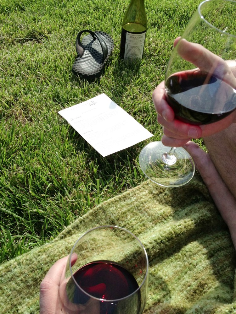 Black Ankle vineyard